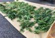 Kod 37-godišnjeg Đakovčanina policija pronašla veću količinu marihuane