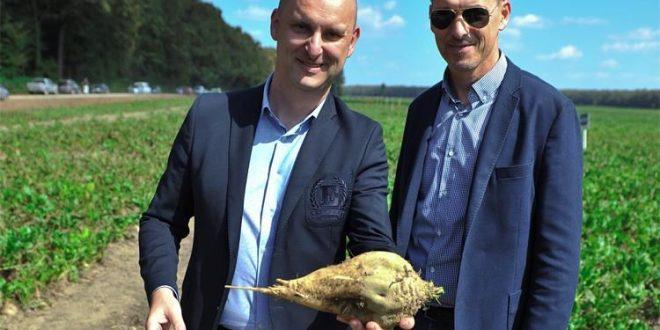 60 milijuna kuna za oporavak proizvodnje šećerne repe