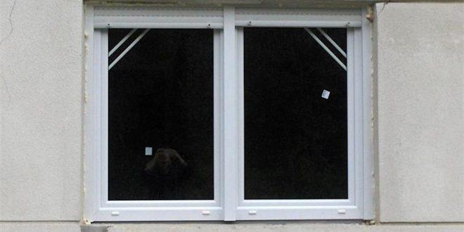 Policija uhitila kradljivca prozora