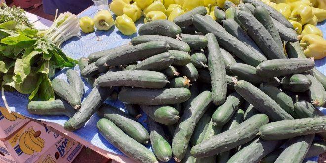 "Podnesen zahtjev za priznavanje oznake ""Dokazana kvaliteta"" za sektor povrća"
